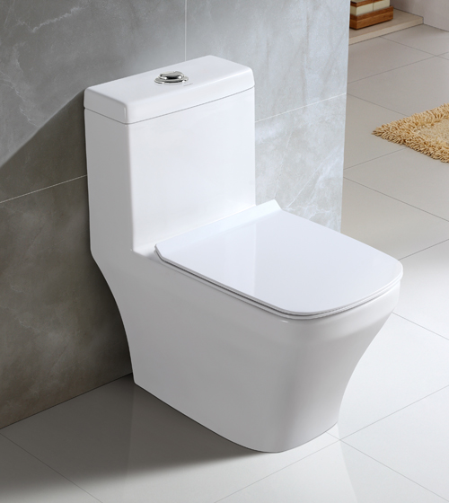 Toilets with In-Built Flush