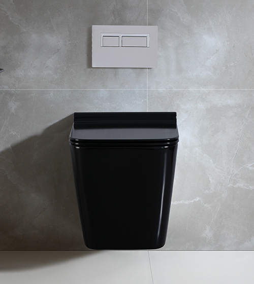 Aquant Black Toilet