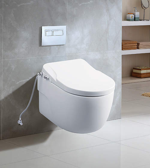 Aquant Toilet with In-Built Bidet