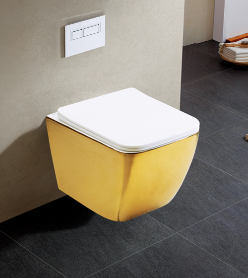 Aquant Gold Toilet