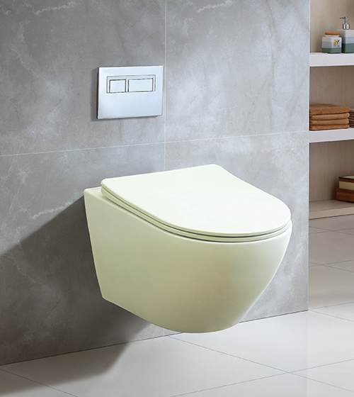 Aquant Matt Mint Toilet